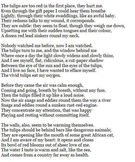 Sylvia Plath Tulips Essay by B L O G H I S T A P E R C A S O Luglio 2011