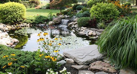 vasca per pesci da giardino vasca per pesci da giardino decorazioni per la casa