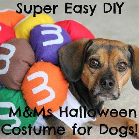 diy mini mms halloween costume  dogs