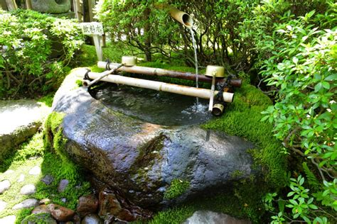 bamboo water top easy design to start a