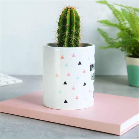 stepmum   making dad happy cactus plant pot