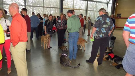 puppy jake foundation events fundraisers puppy jake foundation