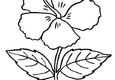 gambar bunga hitam putih  mewarnai gambar bunga