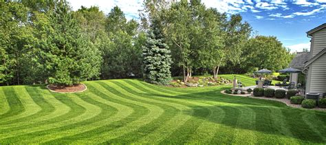 image gallery lawn care