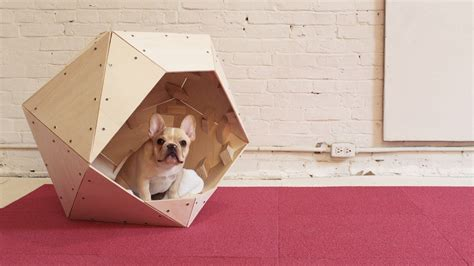 modern episode 13 diy geometric doghouse