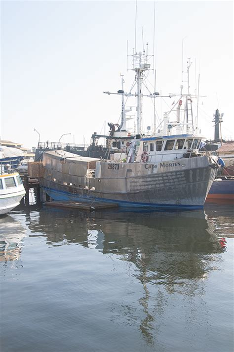 commercial fishing boat builders west coast cape morien westcoast fisherman from the bering to the baja
