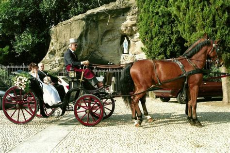 carrozza con cavalli per matrimonio carrozza con cavalli ristorante molera 249 alla carta