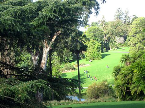 Botanical Gardens Lunch Top Twenty Five Things To Do In Melbourne Melbourne