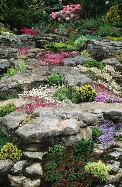 best rock gardens amazing of photos of rock gardens 17 best ideas about rock