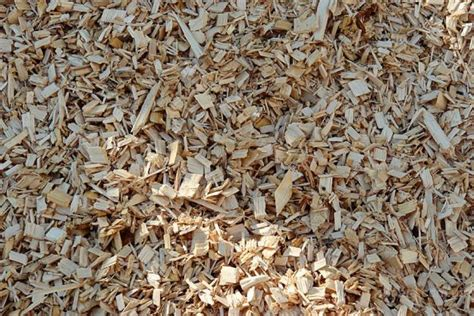 hotsale the lowest price of wood chip from vietnam buy wood chip rubber wood chip vietnam