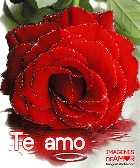 imagenes que digan te amo con una rosa im 225 genes con movimiento que digan te amo