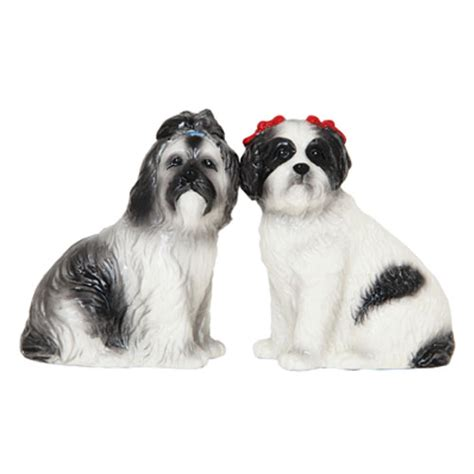 shih tzu salt and pepper pin shih tzu puppies relaxing pictures on