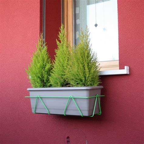 fioriere per davanzali portavasi per finestre 50 cm verde massima adattabilit 224