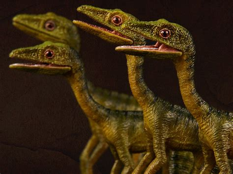 Rebor Compsognathus Bad Company compsognathus longipes quot bad company quot four pack 1 6 scale