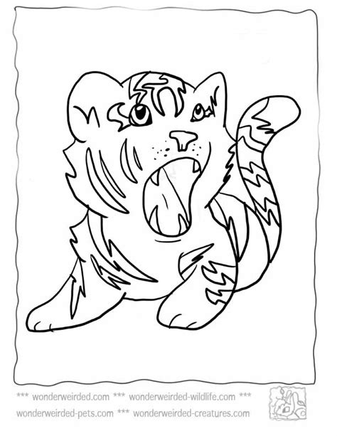 coloring pages baby tiger baby tiger coloring pages az coloring pages