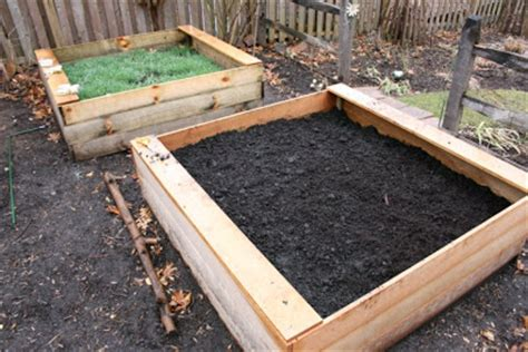 Raised Bed Vegetable Garden Soil Preparation Heirloom Gardener Raised Vegetable Beds Organically