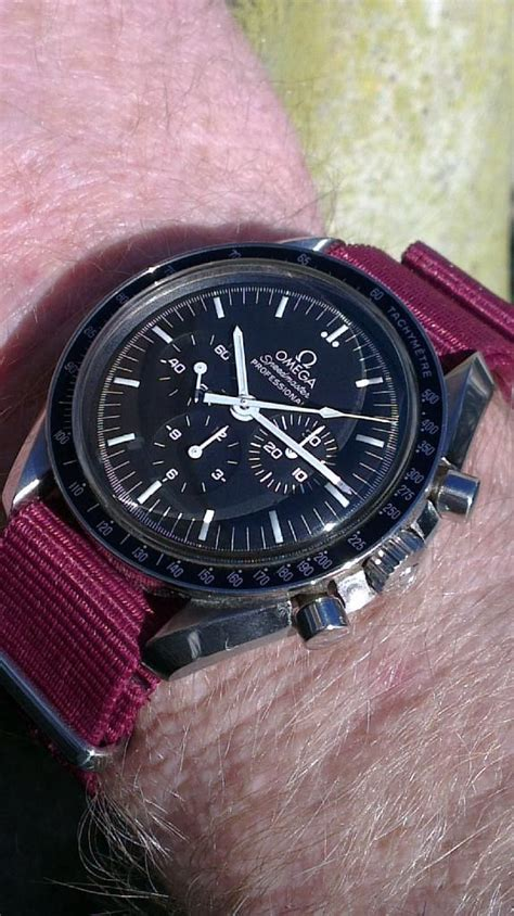 omega speedmaster professional on maroon nato
