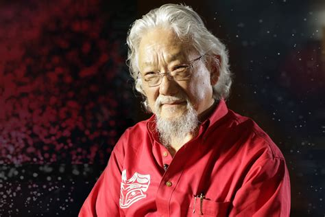 David Suzuki Indigi Lab Streams Iq I With Dr David Suzuki Museum Of