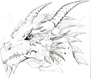 1000 images about dragons on pinterest dragon sketch