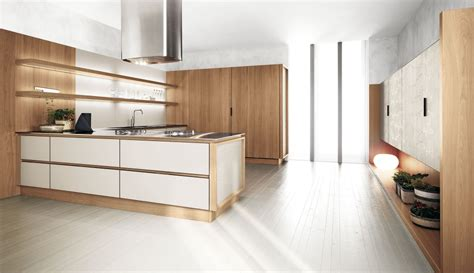 Modern Wood Kitchen Cabinets Kitchen Contemporary Kitchen Cabinets Modern Kitchen Woodwork Alder Kitchen Cabinets