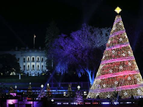 melania trump leads 95th annual national christmas tree