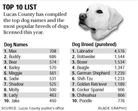 dogs names max continues at top of name list toledo blade