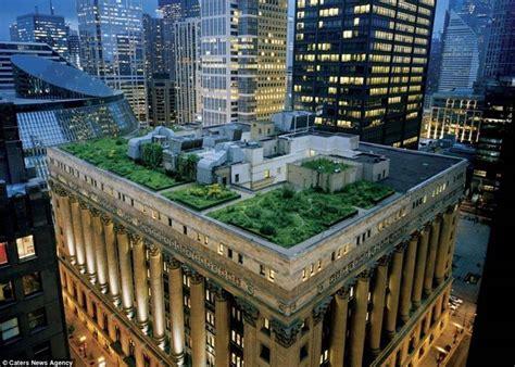 tetti giardino tetti giardino pergole tettoie giardino