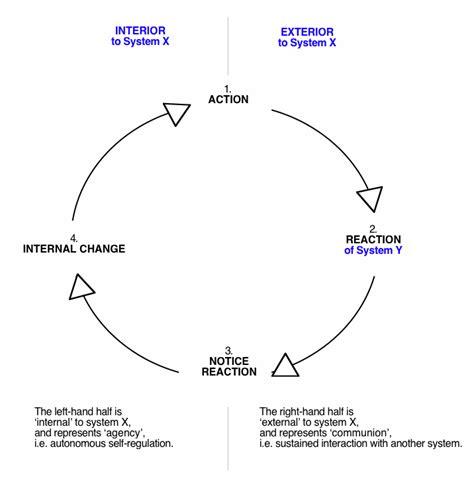 feedback diagram feedback loop diagram homeostasis pictures