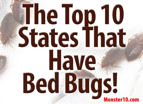 how to tell if you have bed bug bites the top 10 states that have bed bugs