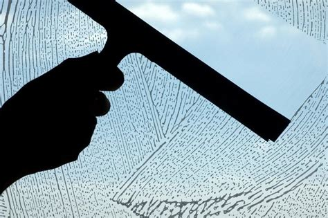 window cleaning hippoclean newmarket cleaning services