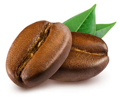 Coffee Beans what is the difference between coffee beans vs espresso