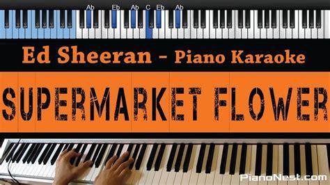 download mp3 ed sheeran supermarket flowers ed sheeran supermarket flower lower key piano karaoke