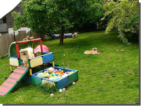 dog backyard playground puppy playground ideas just a lil bit aussie ideas
