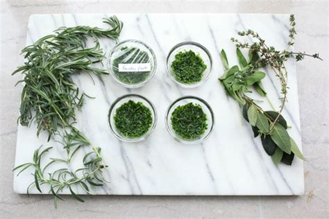 fresh planted herbs gastronomy pinterest making herb paste an easy way to preserve fresh herbs