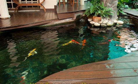 backyard fishpond philippines aquaponics koi pond waters sistem