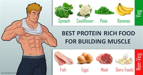 5 protein foods 5 protein rich foods that will build your muscles