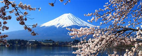 tokyo flights