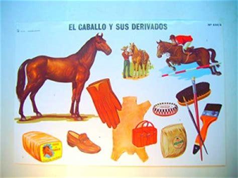 imagenes de animales y sus derivados el maravilloso mundo de los animales animales y sus derivados