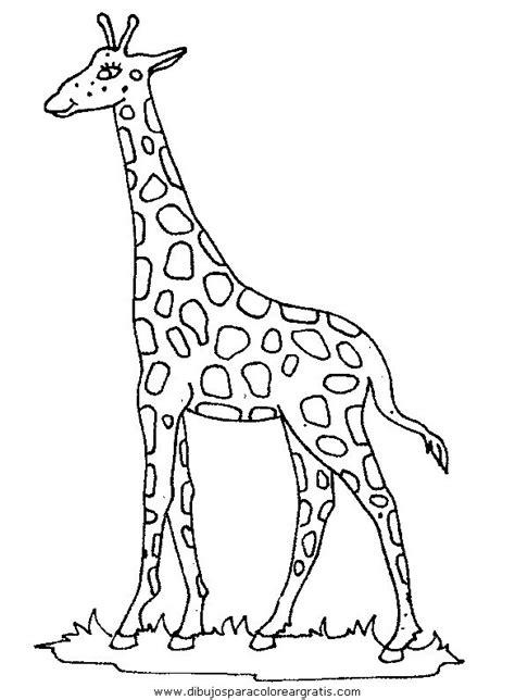 related to dibujo jirafas para colorear paginas de dibujos jirafas dibujos jirafas 45