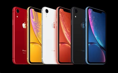 iphone xr  iphone    iphone  whats  difference