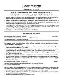 Exle It Resumes by It Director Resume Exle