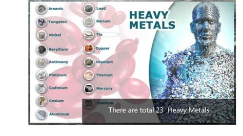 Metal Toxicity Detox by Metal Toxicity