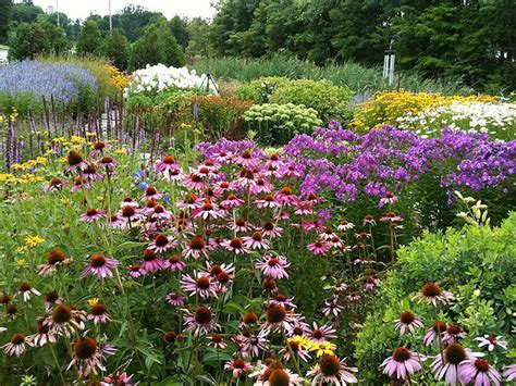 Butterfly Gardens by Planting A Butterfly Garden Southern