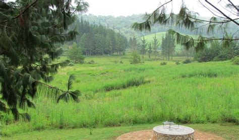 Pinella Cottage pinella self catering farm cottage in magoebaskloof best
