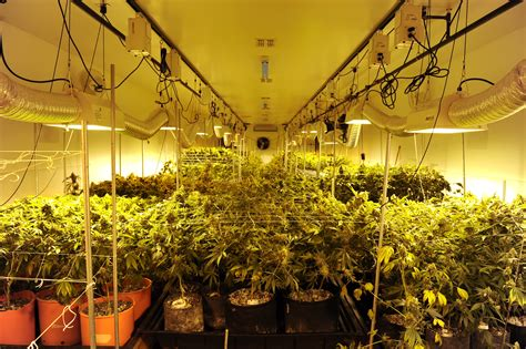 the growing room 18 milestones that led to our marijuana tipping point huffpost