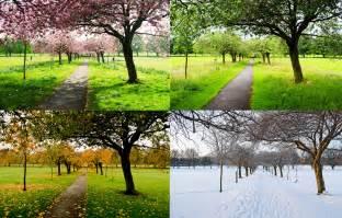 The Four Seasons The Four Seasons Free Stock Photo Domain Pictures