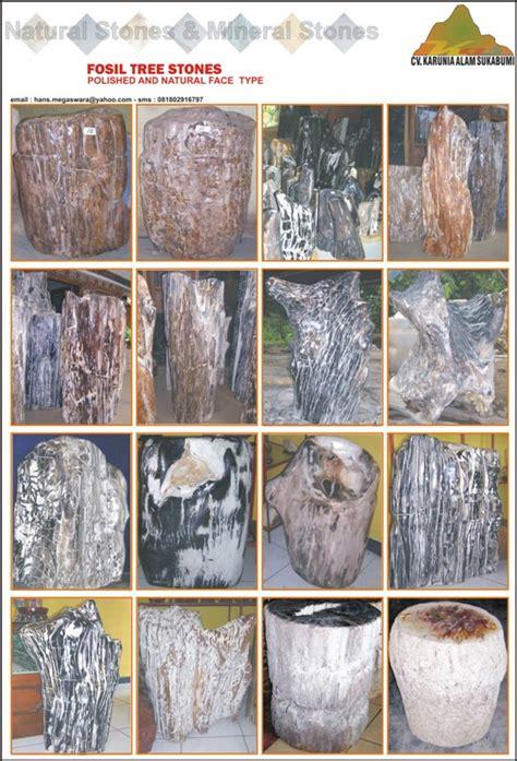 Batu Koral Bintang Merah sukabumi and mineral