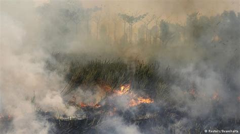 Wildfire Spectators Cause Problems worsening leaves south east asia choked news dw 15 09 2015