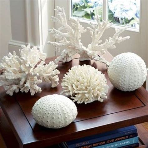 coral home decor sea coral home office ideas