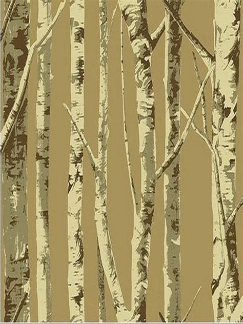 brown contemporary birch tree wallpaper contemporary wallpaper houston by total wallcovering